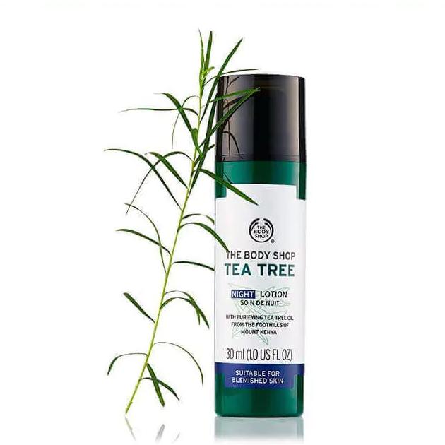 The Body Shop Tea Tree Night Lotion-3671