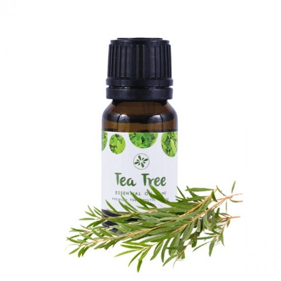 Skin Cafe 100% Natural Essential Oil - Tea Tree-0