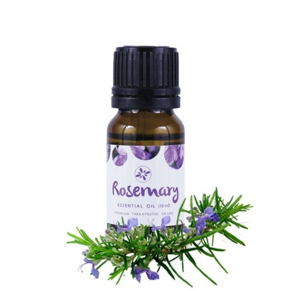Skin Cafe 100% Natural Essential Oil – Rosemary-0