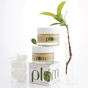 Plum Green Tea Clear Face Mask -7989